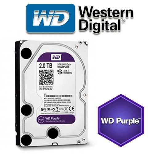 07-o-cung-western-purple-2tb-3-6979